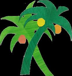 Palmen mit Kokosnüssen